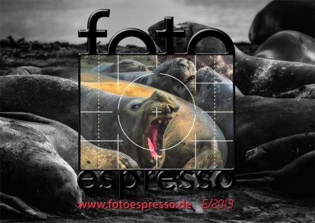 FotoEspresso 6/2013-DE